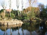 クリスタルパレスの池